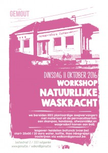 workshop natuurlijke waskracht