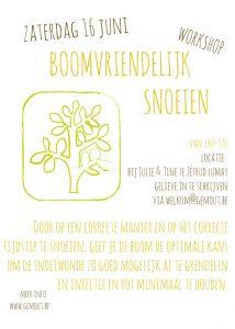 "Workshop ""Boomvriendelijk snoeien"" @ Julie & Tine | Jodoigne | Wallonie | België"